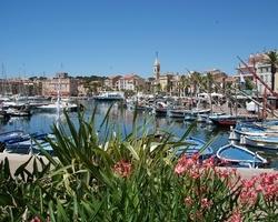 Le Mas de la Frigoulette Chez Bernard et Nico - Sanary-sur-Mer -  A proximité